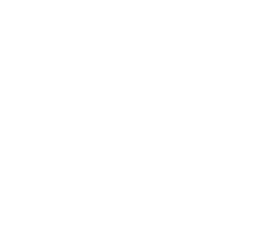 International Mantis Kung Fu Gathering